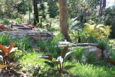 Clareville Balinese Garden