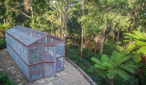 Vege Garden - 1